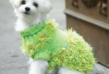 doggy knitted sweaters