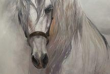at resmi yağlı boya