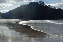 Neuseeland / Neuseeland Reisetipps