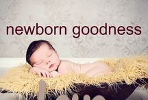 Newborn Goodness  | Mel Noonan Creative / Stunning collection of newborn photo shoots by Mel Noonan Creative www.melnoonancreative.com.au