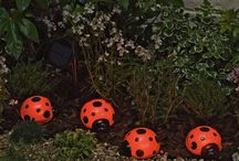 Ladybugs.  / by Traci McMahan