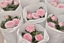 Londres en rose