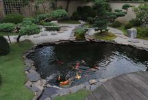 Garden Design ideas / For zen garden/patio/landscaping/ponds