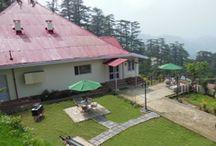 Hilltop Cottage in Shimla
