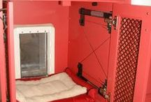 Doggie accommodation