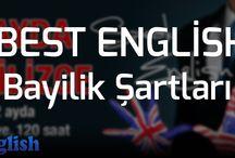İngilizce Kursu Bayilik