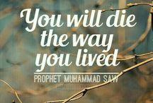 My beloved-lovely Prophet Muhammed~