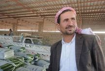 THIS FARMER'S CROPS PROVIDE AFFORDABLE & FRESH FOOD DURING WARTIME IN YEMEN