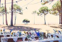 Coromandel wedding