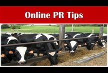Dairy & Milk Product Industry / Informative Tips Videos about Dairy & Milk Product Industry