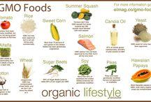 OLM GMOs