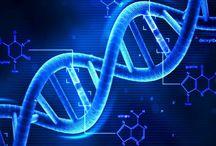 Bilim / Bilimsel Bilgiler - Bilimsel İlginç Bilgiler