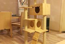 kedi tırmanma evi
