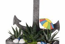 Succulents New collection SS 2017 / Succulents Spring summer 2017 - Nuove composizioni di succulente in vasi di legno dal design marino per omaggiare la stagione estiva