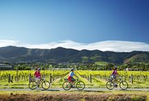 Cycle trips in NZ