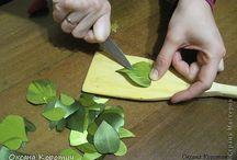 hojas en cintas
