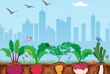 Sustentabilidade / Cidadania