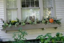 Window Boxes / Window Box Ideas