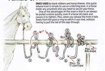 lovas ötletek