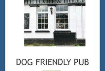 Pet Friendly Locations