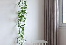 Grădină verticală