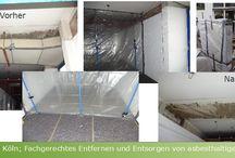 Diverse Projekte / Dachreinigung, Fassadensanierung, Brunnen, Bankirai, Terrassensanierung, Zaunerstellung, Asbest