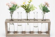 Green home decor / Plants