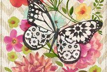 Mi animal preferido / Me encantan las mariposas