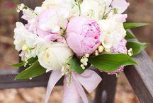 Wedding - Pink / by Sara Vega