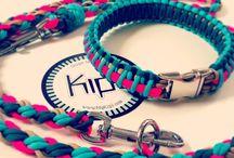 Pet fashion :)