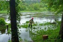 Wkra i okolice / rzeka - spływy kajakowe - ciekawe miejsca nad Wkrą