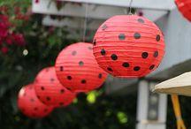 Ladybug • Party