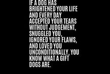 love dogs quotes