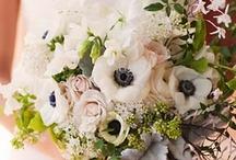 Wedding Ideas / by Erin Wagner