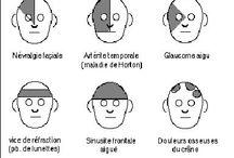 Physiologie - médecine alternative