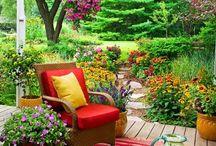 terrace , pattio . backyard