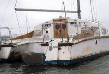 orange zeus / The boat...