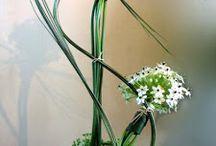 floralart