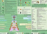 Wombman Health and Healing