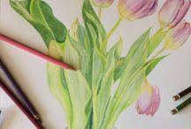 MY Draw&paint