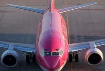 Pink- Pink - Pink