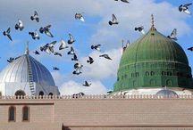 ياطيور الحرم بلغى سلامنا الى الحبيب صلى الله عليه وسلم وأخبريه اننا فى اشد الشوق والتوق اليه