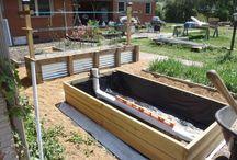 Wicking beds veggie gardens