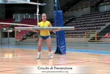 Volleyball Workout Program / Video About Volleyball Workout Program all videos were filmed by the site www.preparazionefisicaeducation.com