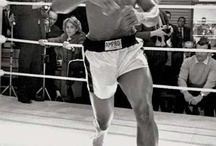 The Greatest Boxers