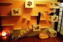 meubels / Zelf m maken tuin en katten