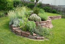 jardin rocaille