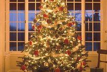 Holidays / by Britney Alexa