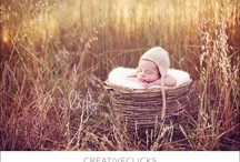 Newborn Photography Inspiration / by Jessica Bookout