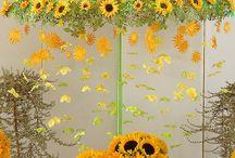 Online Flower Delivery In Goa / Send flowers to goa, flower delivery in goa, best online florist in goa, goa online florist, cakes delivery in goa, same day flower delivery in goa, florist in goa. http://www.onlineflowersgift.com/send-flowers/goa